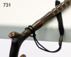 CareQuip walking stick carry loop